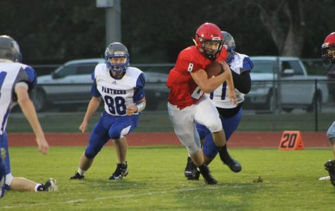 Senior and quarterback Collin Koester rushes against the Panthers on Oct. 4 . The Cardinals took this game 64-8.  Koester leads the Cardinals in rushing this season with 883 yards.