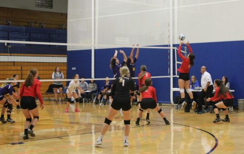 Volleyball season ends at substate